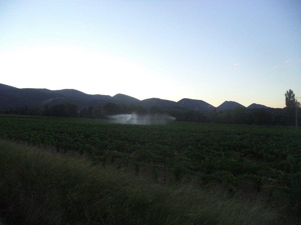 la sècheresse est bien présente, les viticulteurs arrose leurs champs