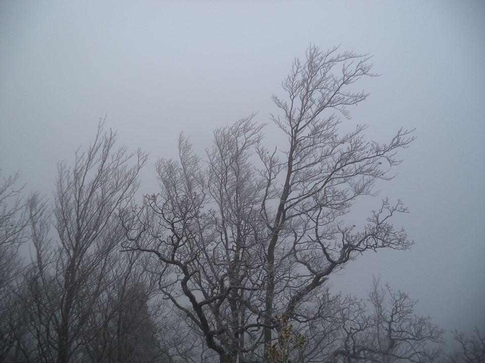 le brouillard sur la crete
