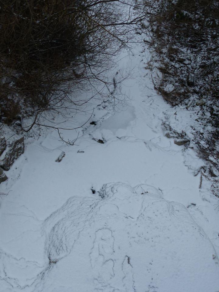 le Lez complètement gelé et recouvert de neige