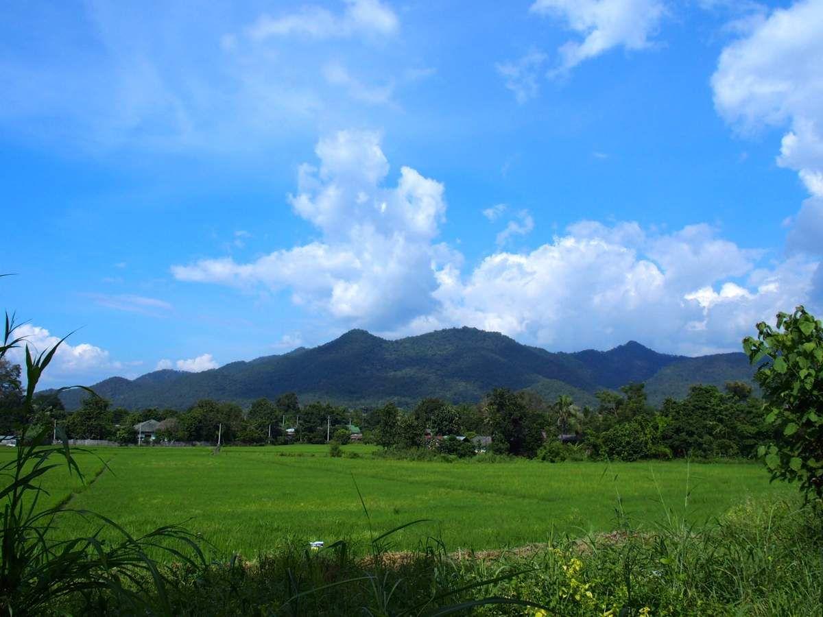 Paï - de la montagne aux rizières