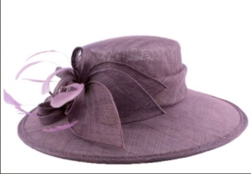 le chapeau violet - the purple hat