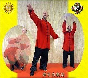 Nouveau DVD, Dao Yin Nei Qi Gong