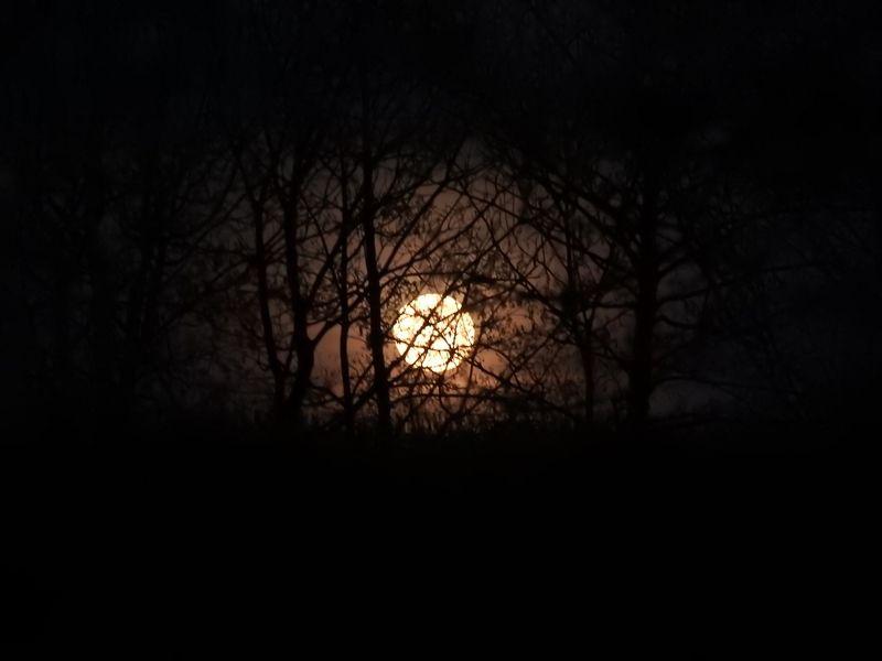 En vrac le blog de - Date lune rousse 2017 ...