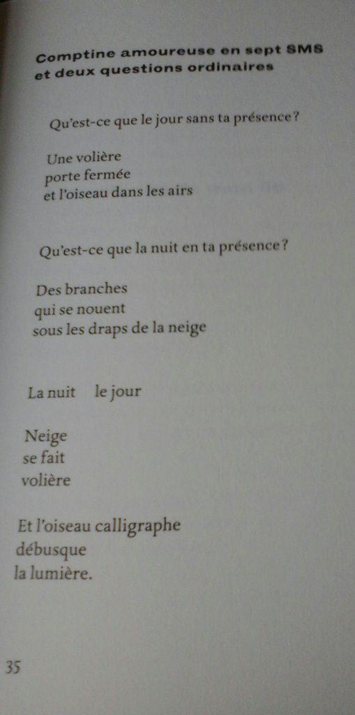 """""""S'il existe un pays"""", Bruno Doucey, éd. B. Doucey"""