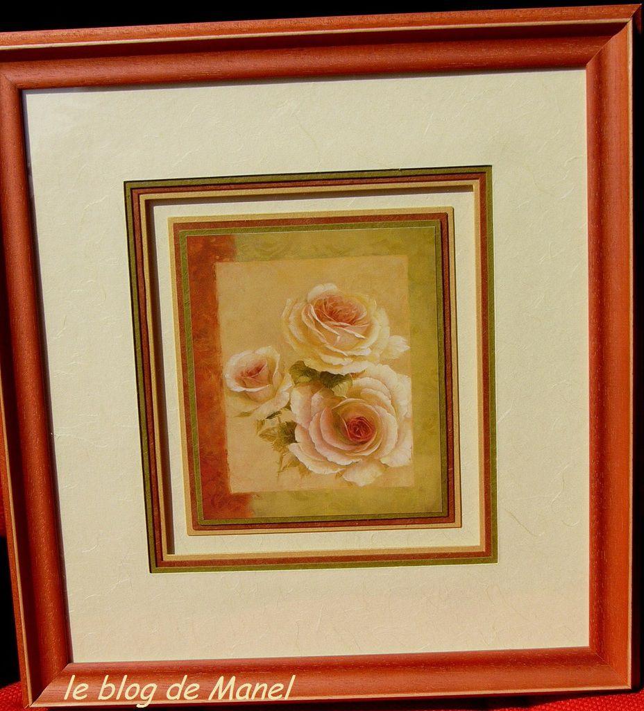 Des roses pour les grands mères