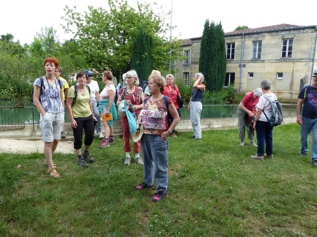 17-06-2017 Sortie Plantes ( Trémont )