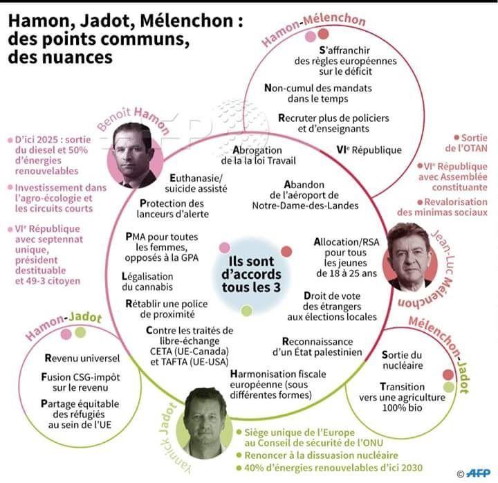 QUESTIONS à celles et ceux qui pétitionnent pour une alliance HAMON-JADOT-MÉLENCHON