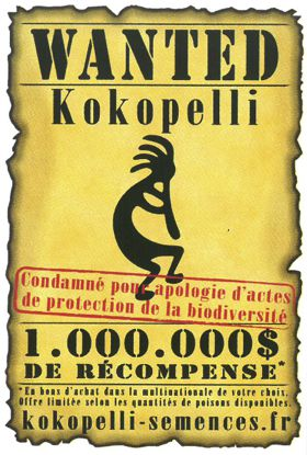 A la découverte de Kokopelli...