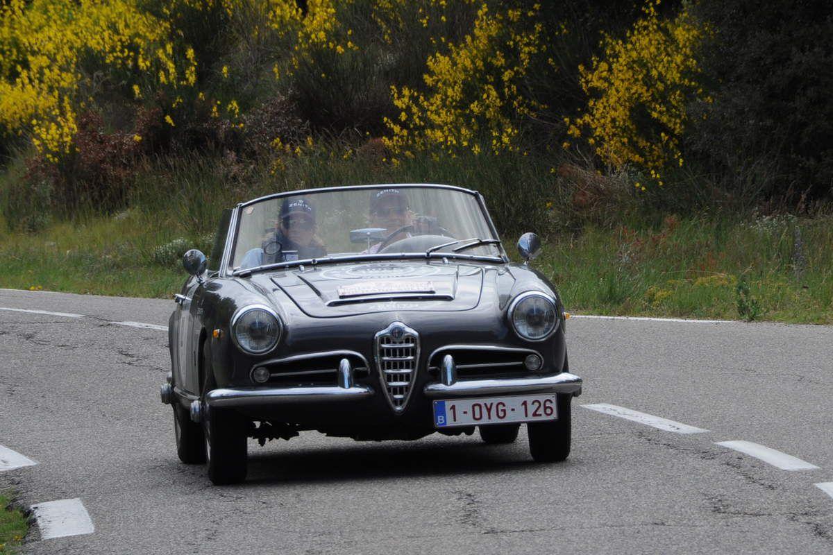 Alfa Romeo Guilia Spider 1600 1963