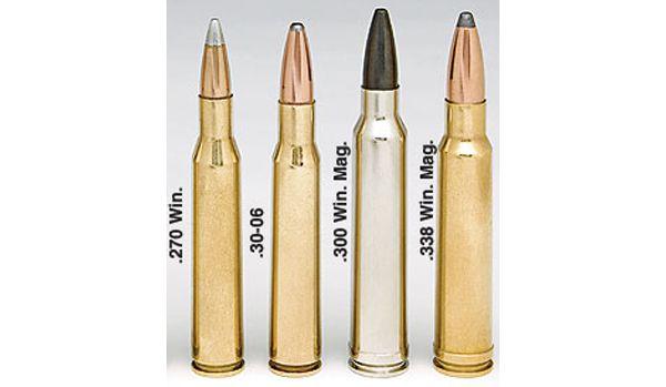 Le calibre .270 Winchester