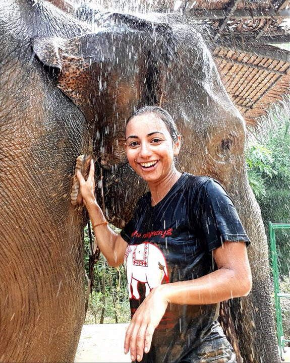 Elephant decouverte à Kanchanaburi avec SAWADI SAIYOK Jungle Adventure