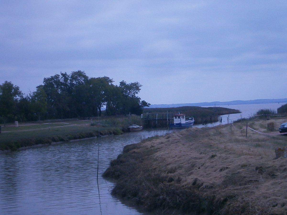 Sortie VTT du Port de BY 2017