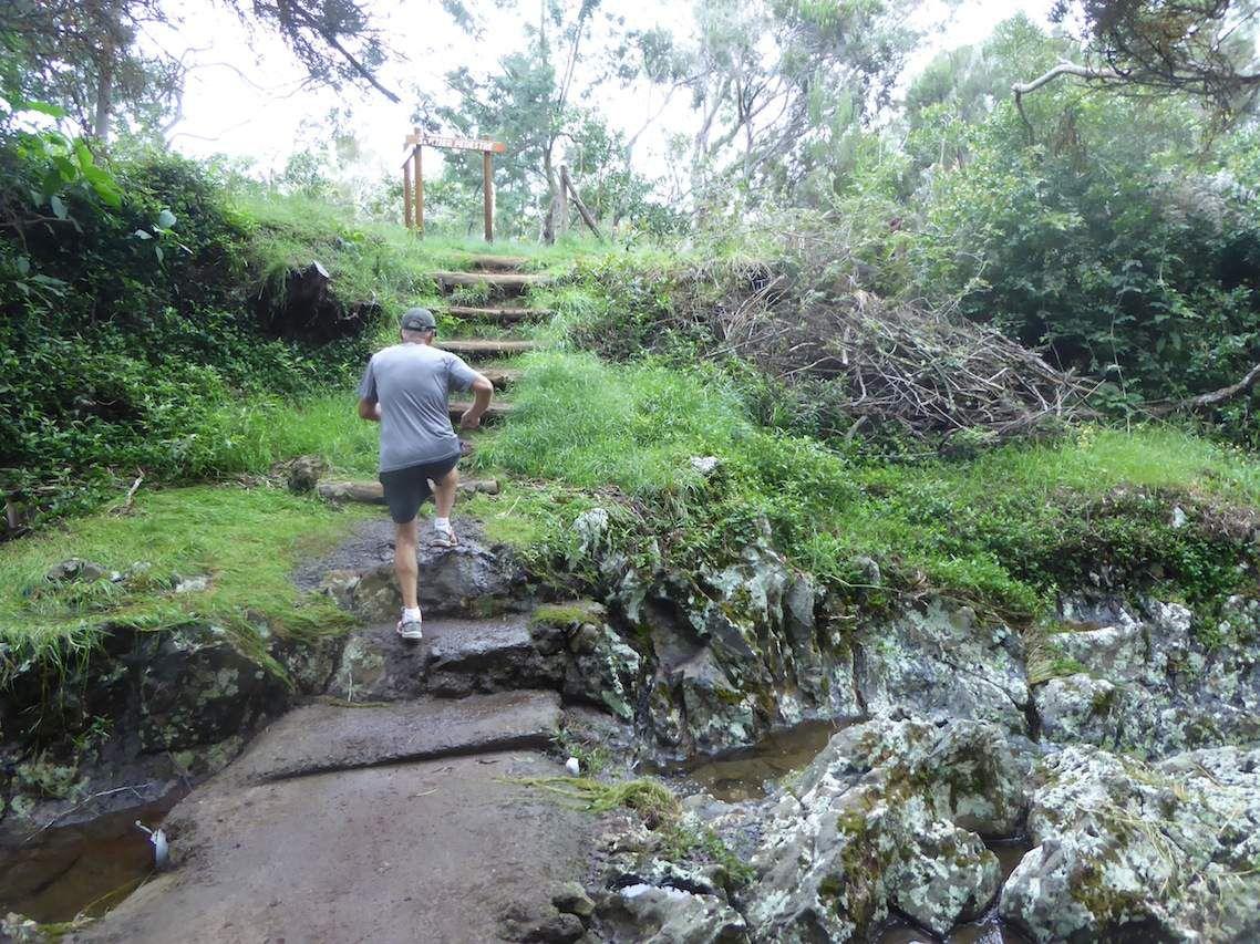 Randonnée au « Sentier Botanique de la Ravine Blanche »