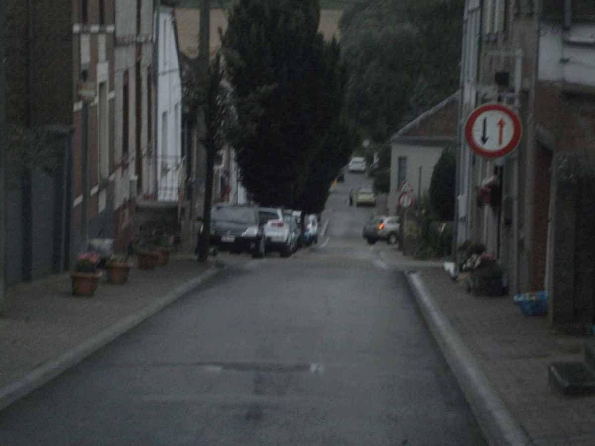 """""""C'est tout ou rien"""" en matière d'élagage à la rue Royale, à Chapelle-lez-Herlaimont!"""