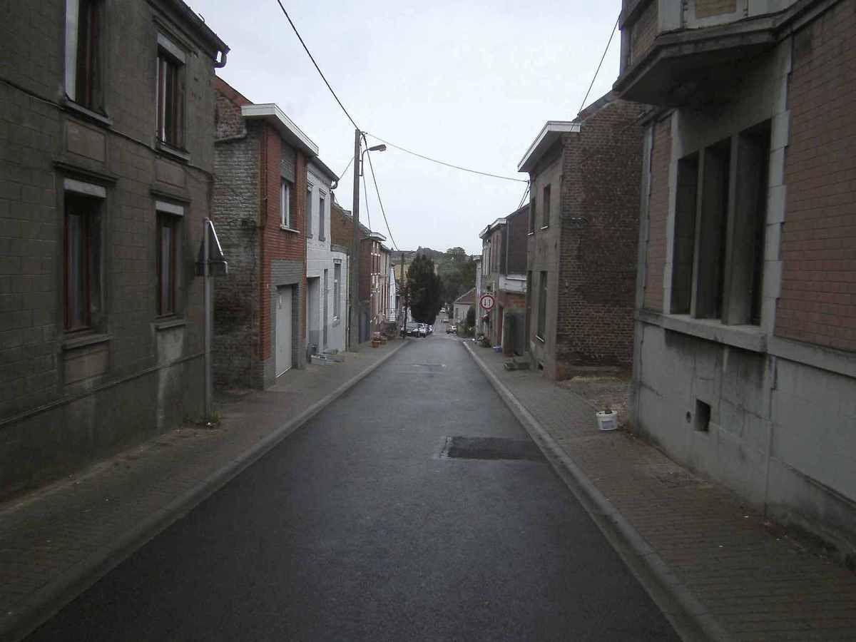 &quot&#x3B;C'est tout ou rien&quot&#x3B; en matière d'élagage à la rue Royale, à Chapelle-lez-Herlaimont!