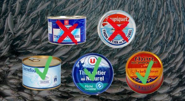 Du mercure et de l'arsenic dans votre thon en boîtes