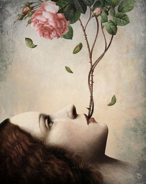 Illustration Christian Schloe