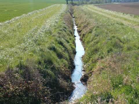 Bande enherbée protégeant les sources de la Beuvronne descendant de la forêt Régionale de Montgé en Goële