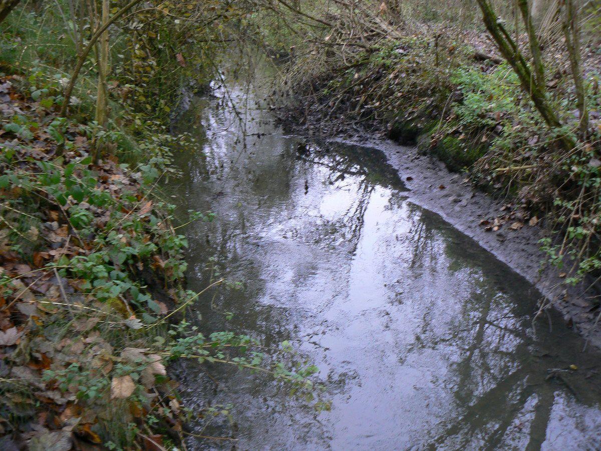 La Reneuse (affluent de la Beuvronne) à Gressy, après le rejet des eaux d'ADP