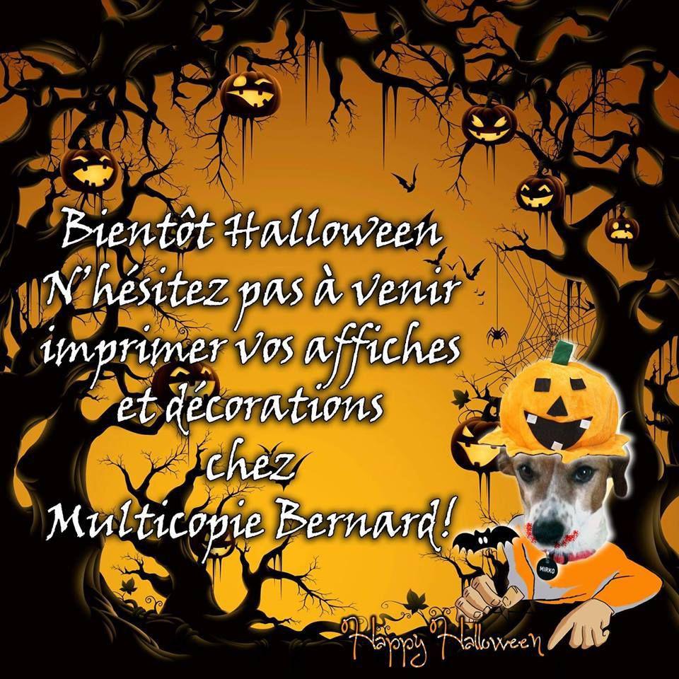 page FB https://www.facebook.com/multicopie.bernard/?fref=ts
