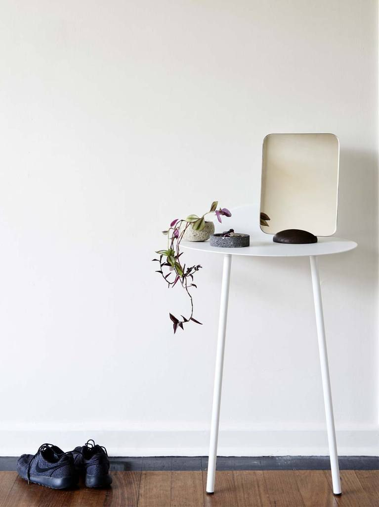 Studio avec plantes vertes