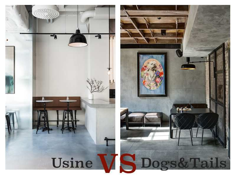Usine VS Dogs & Tails
