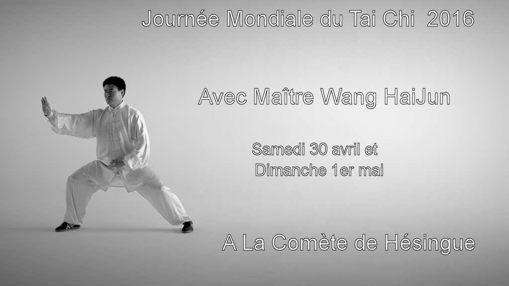 Journée Mondiale du Tai Chi avec Wang Haijun à Hésingue