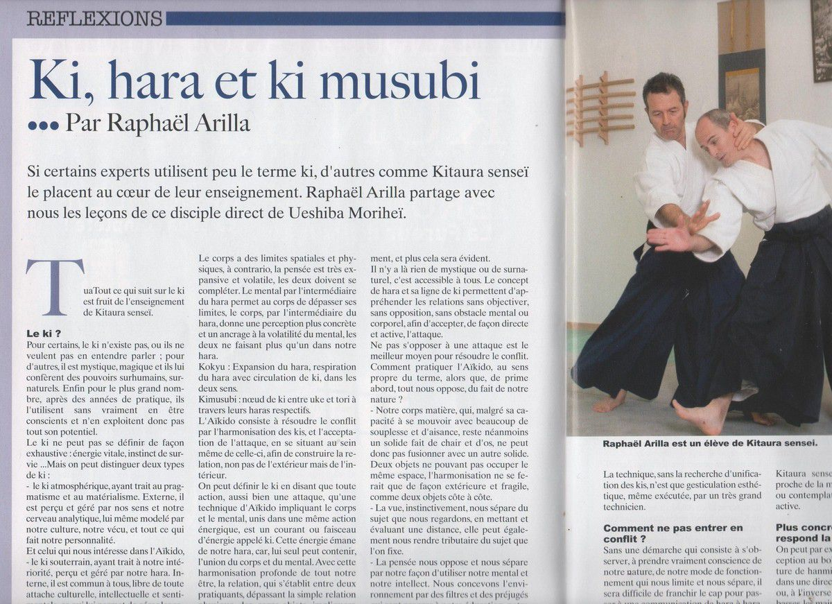DRAGON MAGAZINE : ARTICLE DE RAPHAEL