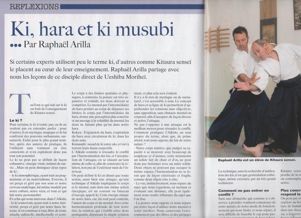 DRAGON MAGAZINE : ARTICLE DE RAPHAEL