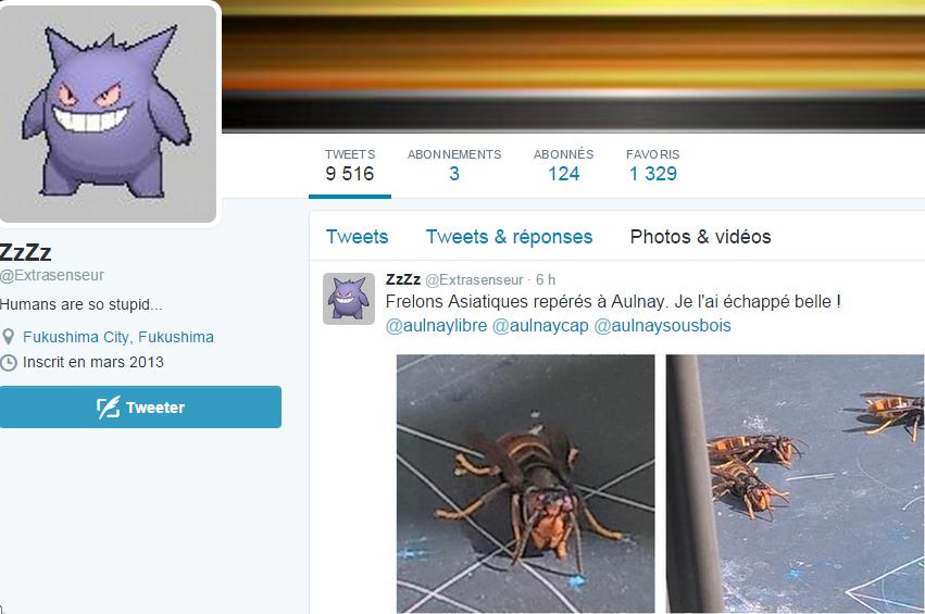 Bientôt des attaques de frelons asiatiques à Aulnay-sous-Bois ?