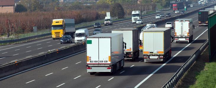 «Taxe poids lourds : le rapporteur public donne raison à Alsace Nature en conseil d'état»