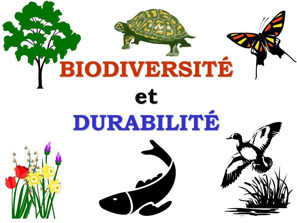 Les dirigeants chasseurs contre la biodiversité