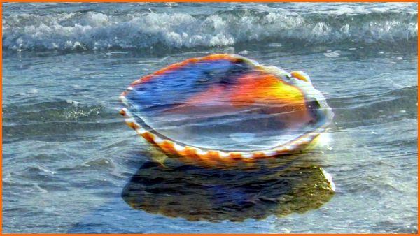 Jeu de vagues (photogramme)