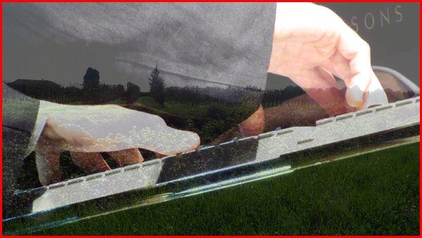 Rêveries (photogramme)