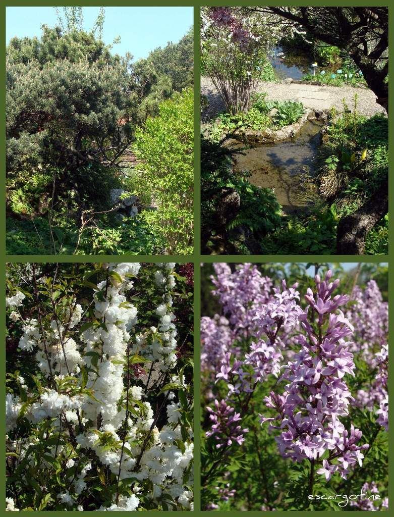 un petit tour dans les jardins