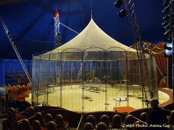 Sous le chapiteau du Cirque Achille ZAVATTA fils