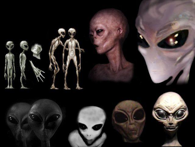 L'Alliance d'Anchara et les Guerres Galactiques ! (09/2016)