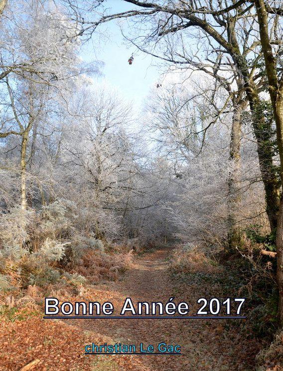 BONNE ANNEE 2017 A TOUS...