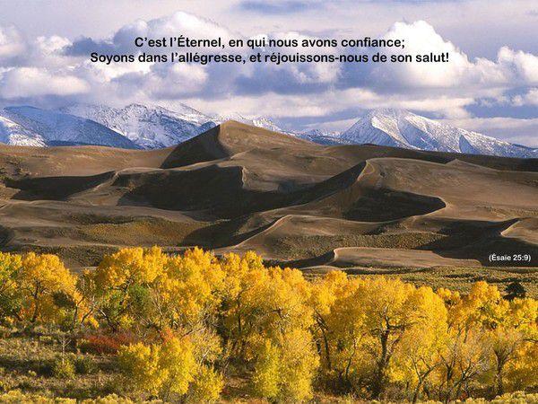 Le royaume de Dieu est répandu sur toute la terre et les hommes ne le voient pas.(St Thomas)
