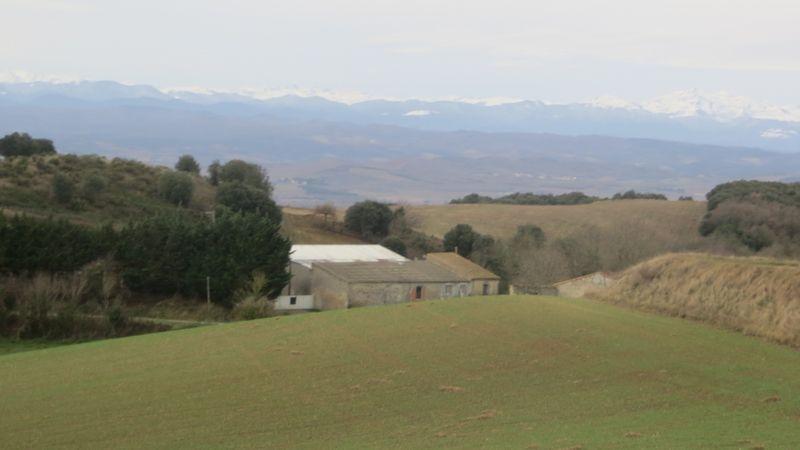 Les Pyrénées en fond...