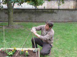 Je jardine, tu jardines, il jardine... un potager à la Médiathèque