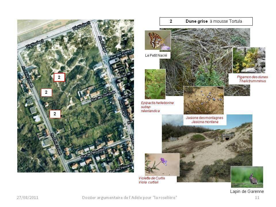 Des questions sur la faune et la flore des dunes mais aussi des jeux et des questions sur les digues ...
