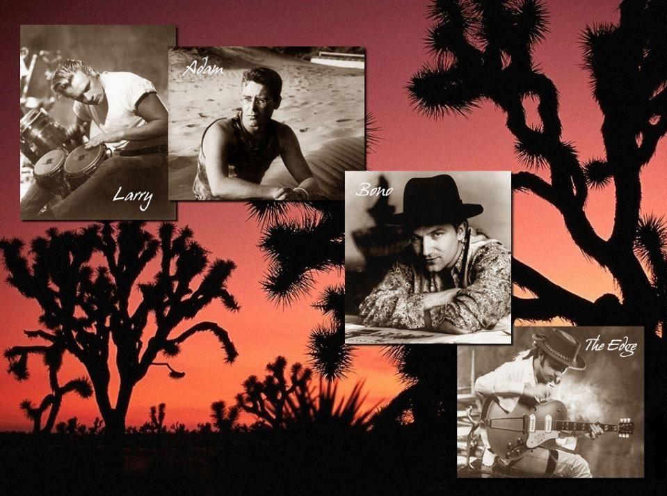 U2 Blog fête son huitième anniversaire aujourd'hui et vous remercie de votre fidélité et de tout vos commentaires consacrés à ce groupe avec ses 4062 articles à ce jour .