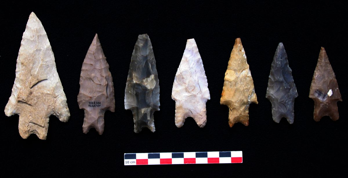 Pointes du type Pedernales/PERDERNALES FROM THE GEORGETOWN AREA, WILLIAMSON COUNTY, TEXAS.