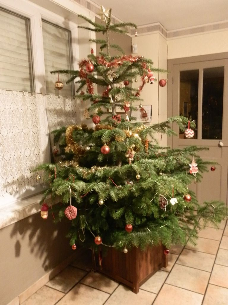 Notre sapin rouge et or.