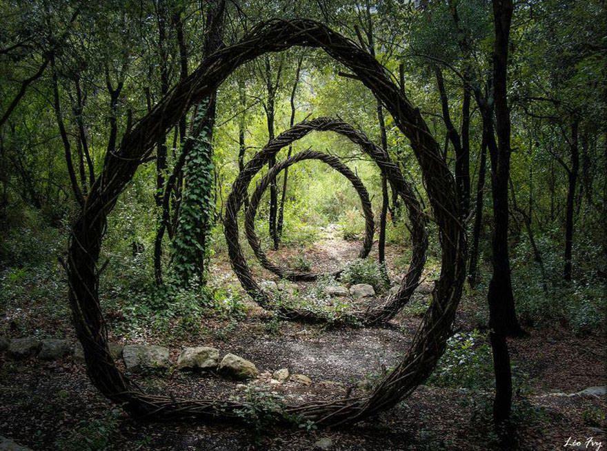 Art forestier - 1