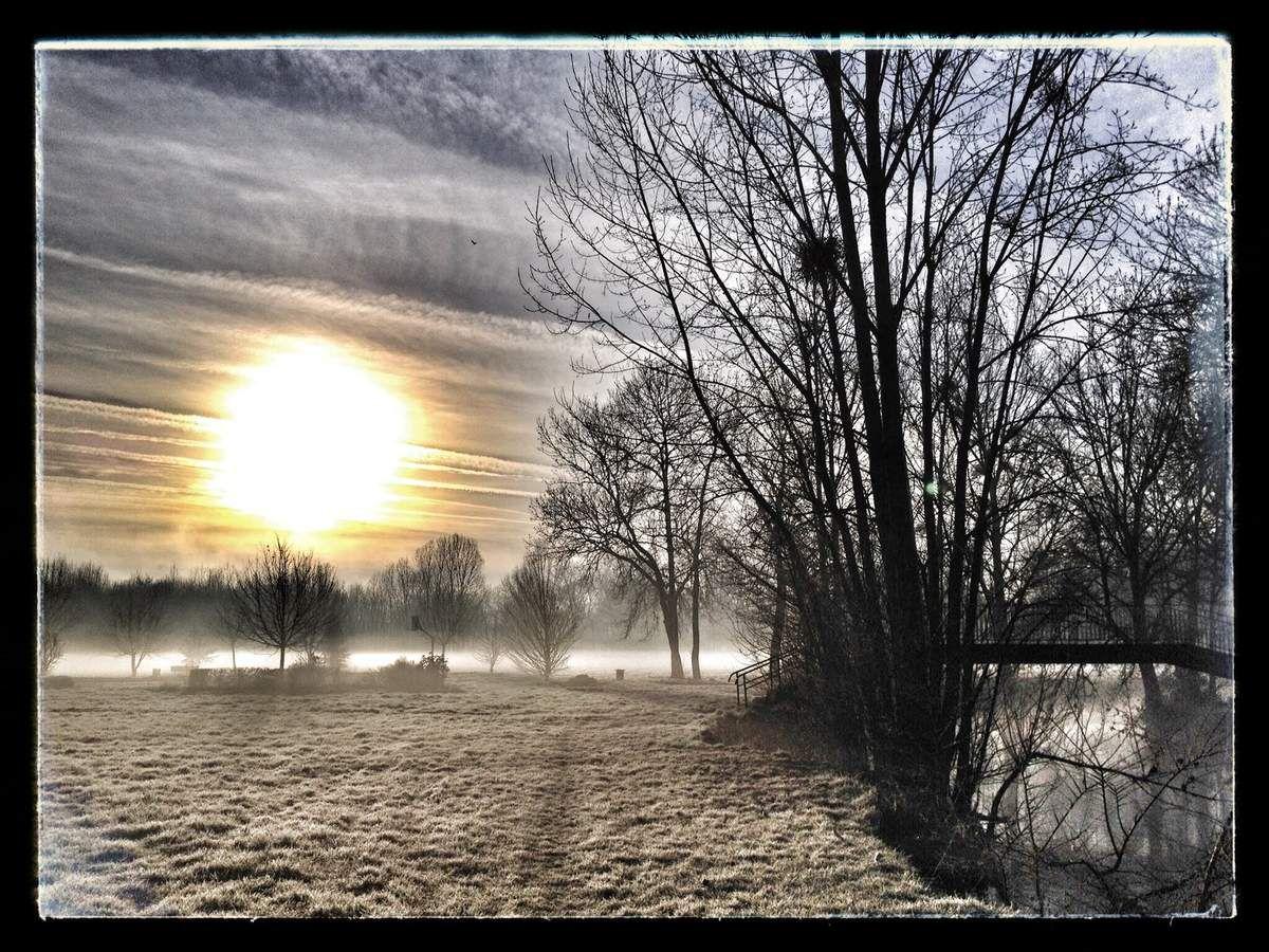 Prairie au bord de l'Indre à Saint-Maur par un dimanche matin brumeux et frisquet