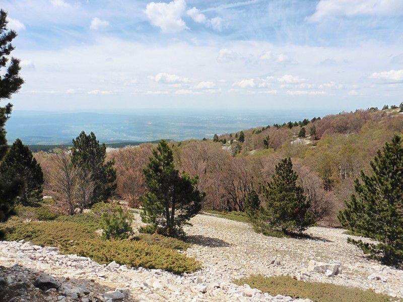 Chapitre 2010 : au Mont Ventoux