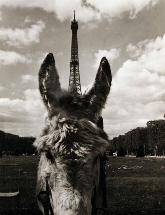 Eiffel Tower and Little Horse, 1960s by Robert Doisneau