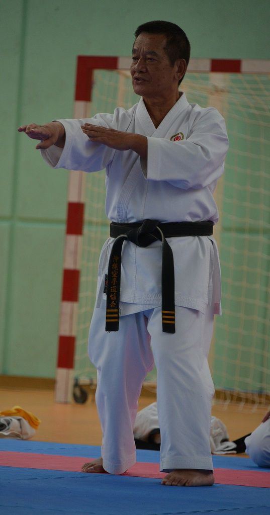 [CR] Stage Nationale de Uechi Ryu - 5 juin 2016